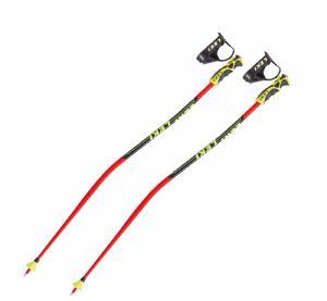 Baton de ski leki